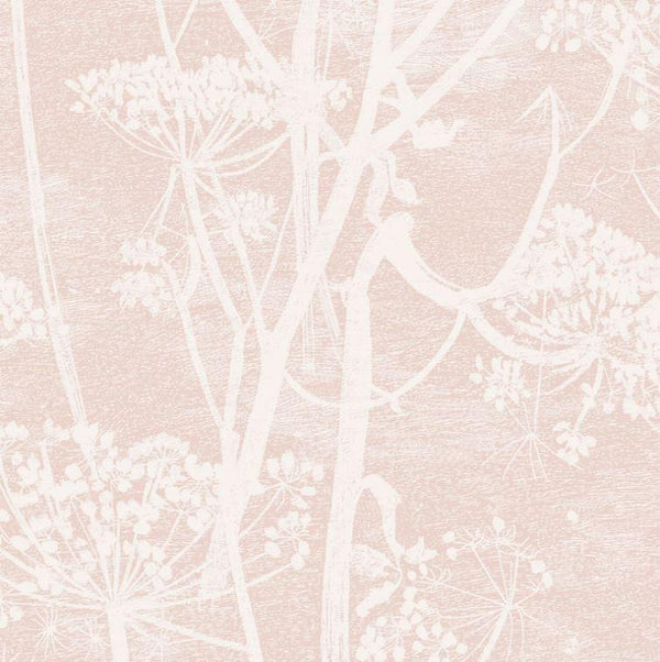 Cole & Son Wallpaper 1 x Roll Cow Parsley 112/8028 Wallpaper Cole & Son Icons Cow Parsley Wallpaper