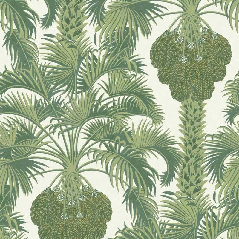 Cole & Son Wallpaper 1 x Roll Hollywood Palm 113/1004 Cole and Son Martyn Lawrence Bullard Hollywood Palm Wallpaper 4 Colours