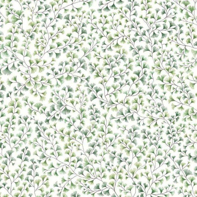 Cole & Son Wallpaper 1 x Roll Maidenhair 115/6018 Wallpaper Cole and Son Botanical Botanica Maidenhair Wallpaper 4 colours