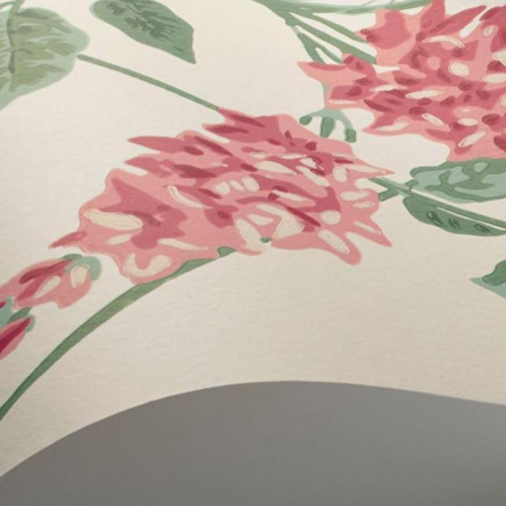 Cole & Son Wallpaper Cole and Son Botanical Botanica Wisteria Wallpaper 5 colours