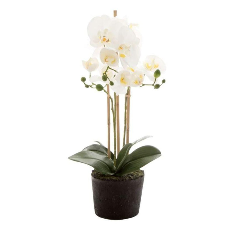 Gaudion Furniture Artificial Flowers Orchid in Paper Pot