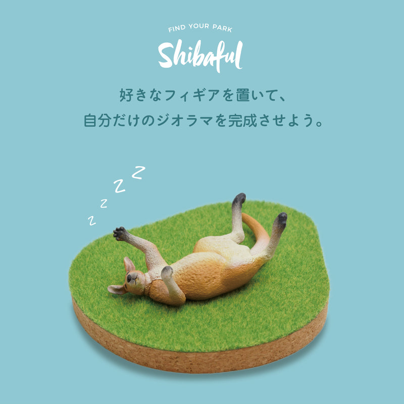 Shibaful Island Coaster Set