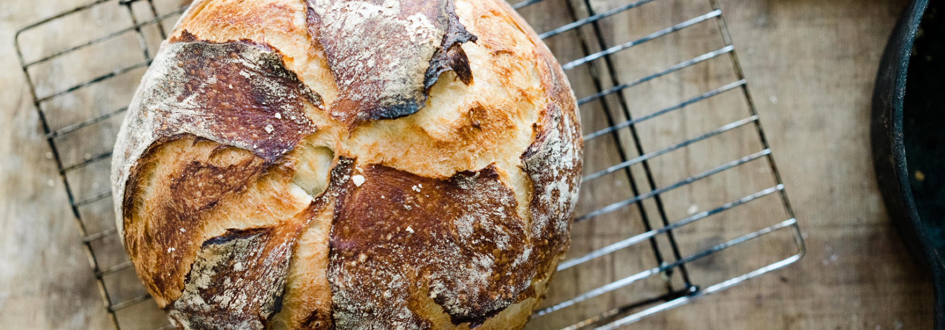 Feed your gut with sourdough