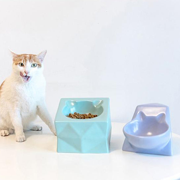 Ledi Ceramic Pet Bowl