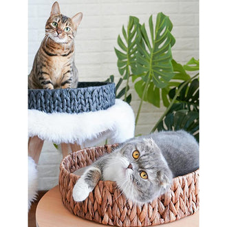 Hand-Woven Rattan Cat Bed With Scratch Board