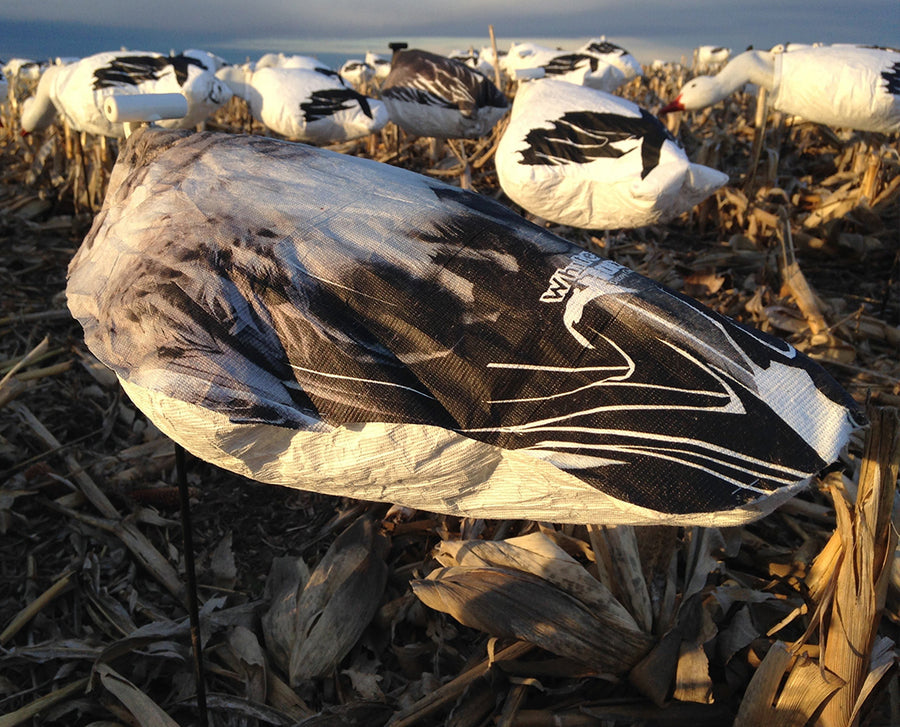 Headless Juvy Snow Goose Windsocks