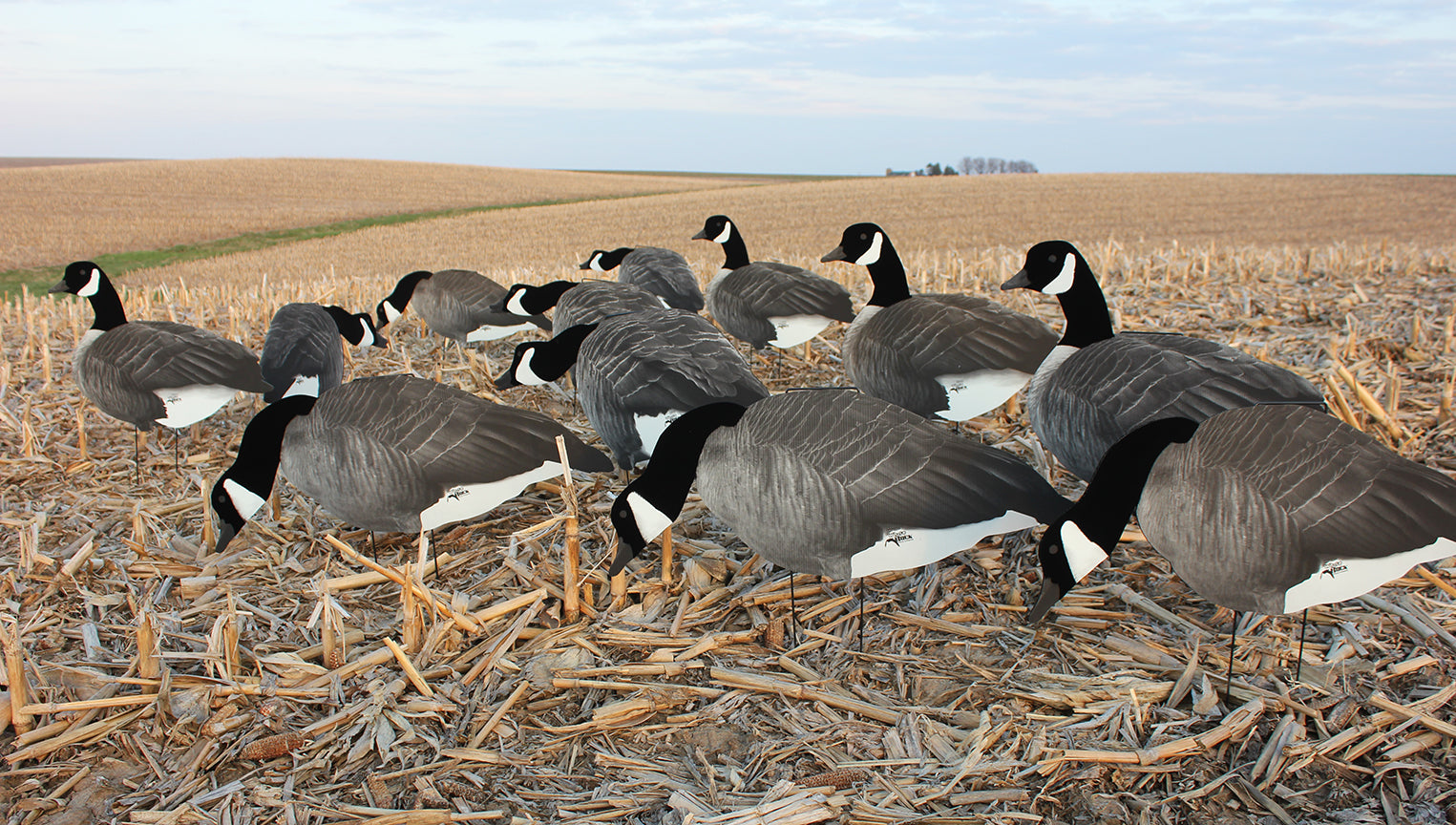 Flocked Head Silhouettes – White Rock Decoys