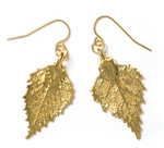 Birch Earrings - Gold