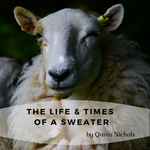 The Life & Times of a Sweater by Quinn Nichols