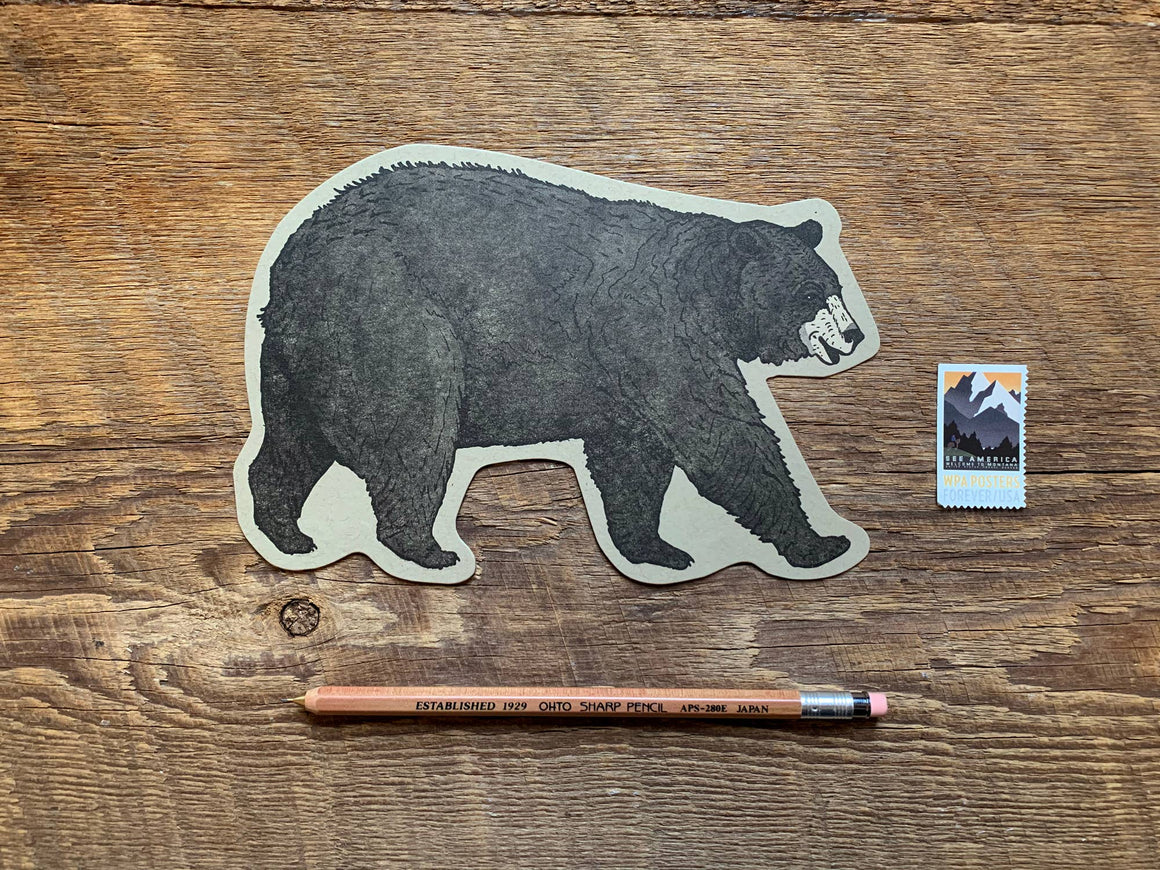 Black Bear Postcard
