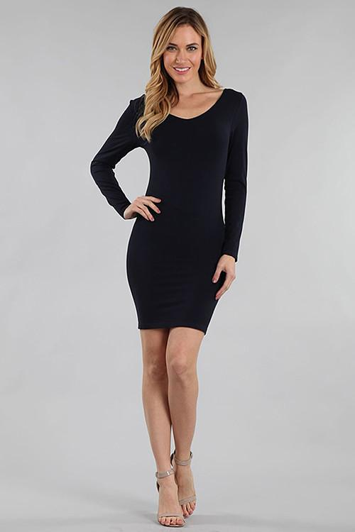 V Neck/Scoop Neck Long Sleeve Fitted Dress