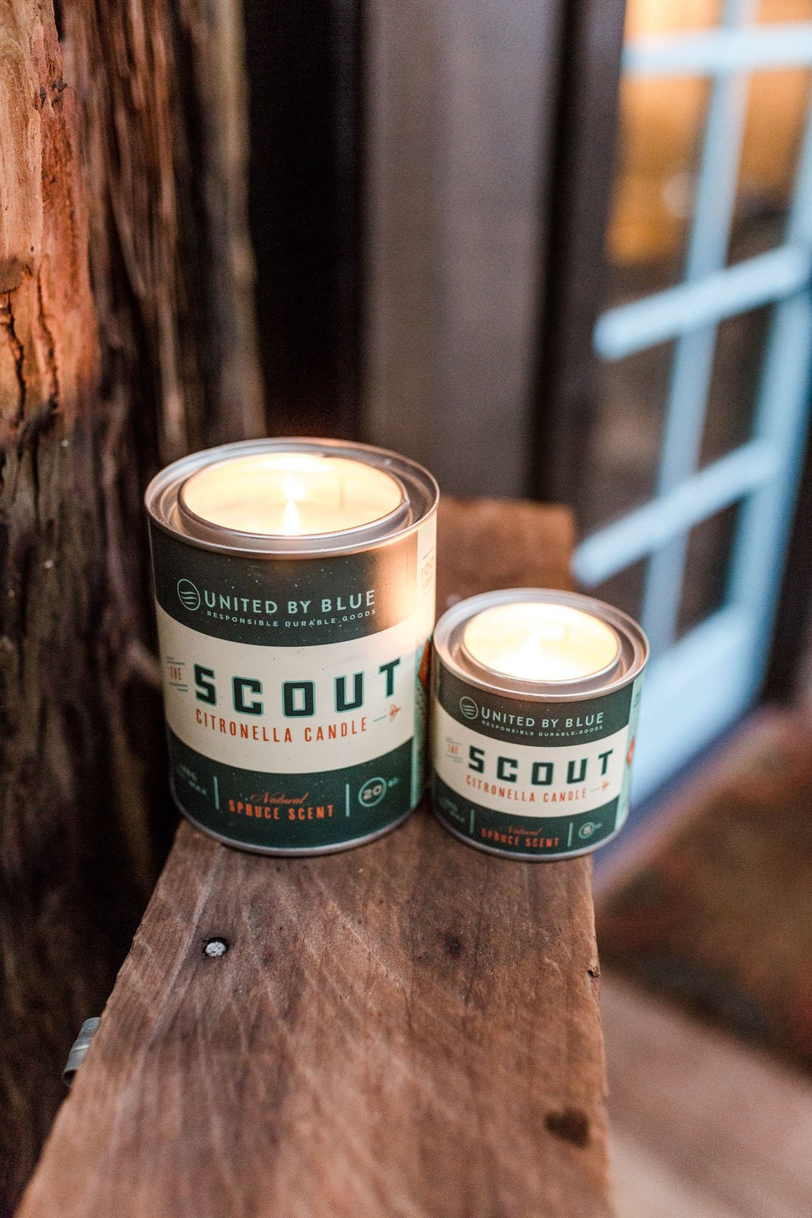 Scout Citronella Candles