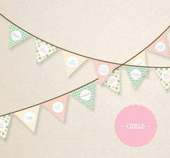 HALF PRICE PINK/GREEN Bunting Flags - Fruit of the Spirit