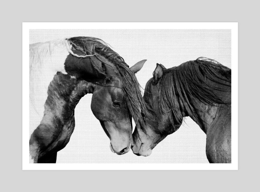 intimat-ehorses-lila-and-lola-on-the-wall_RHNLLY25W0AS.jpg