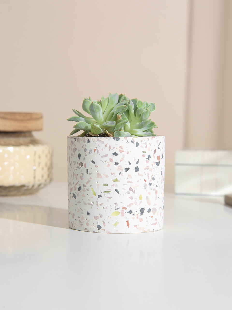 Terrazzo Planter Collection