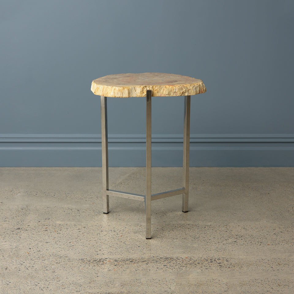 Petrified Teak Side Table with Stainless Steel Base