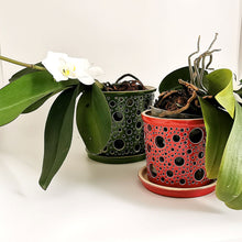 Load image into Gallery viewer, Ceramic Orchid Planter -Planter - CozyHomeIdeas