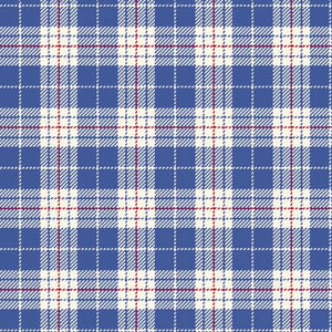 Fabric Flannel ,Primo Plaids Aunt Grace Blue U091-0150