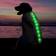Large Green LED Rechargeable Dog Vest