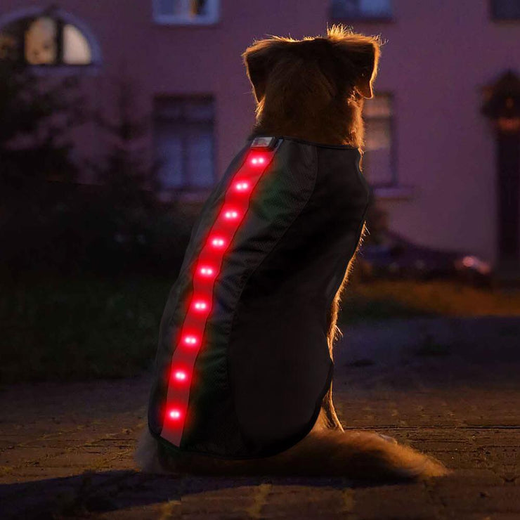 Large Red LED Rechargeable Dog Vest