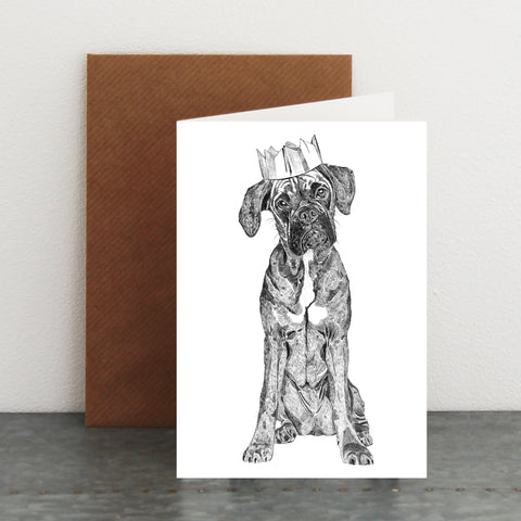 'Party Boxer' Christmas Card