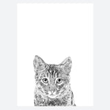 'Frankie The Cat' Print