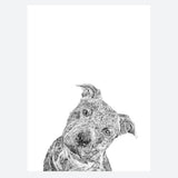 'Rex The Staffordshire Bull Terrier' Print