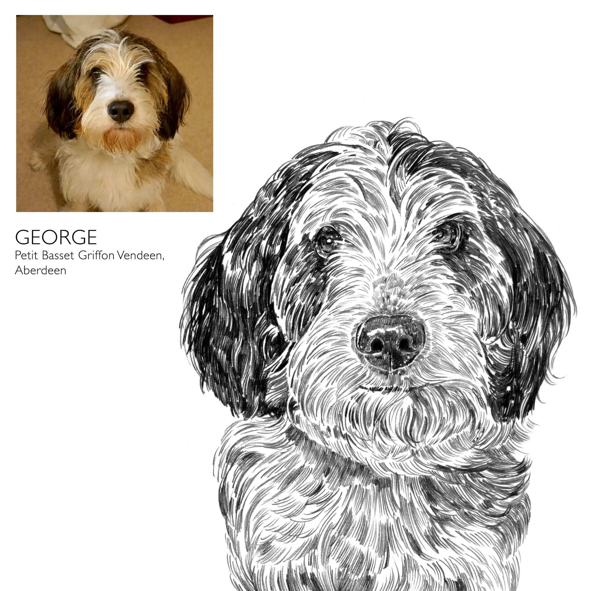 Bespoke Dog Portrait