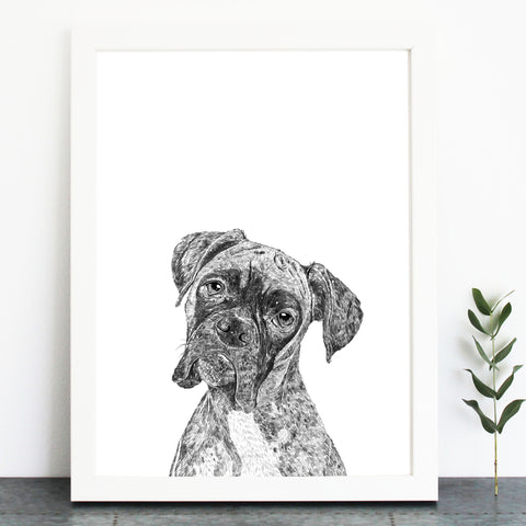 'Rocky The Boxer' Print