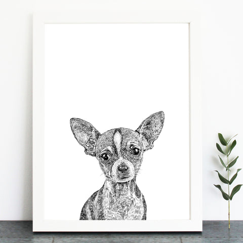 'Dolly The Chihuahua' Print