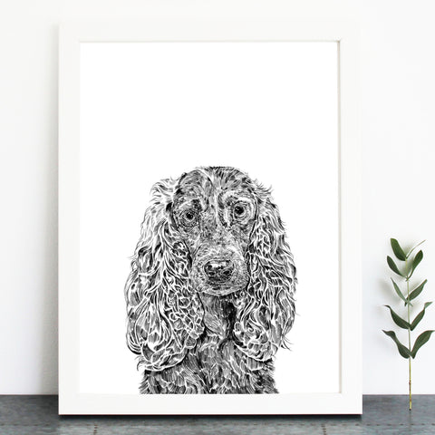 'Chester The Cocker Spaniel' Print