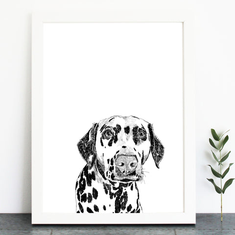 'Crawford The Dalmatian' Print