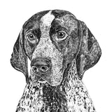 'Napoleon the English Pointer' Print
