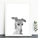 'Freida The Greyhound' Print