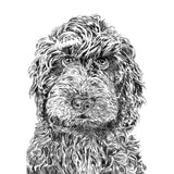 'Rusty The Labradoodle' Print