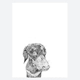 'Ralph The Miniature Daschund' Print