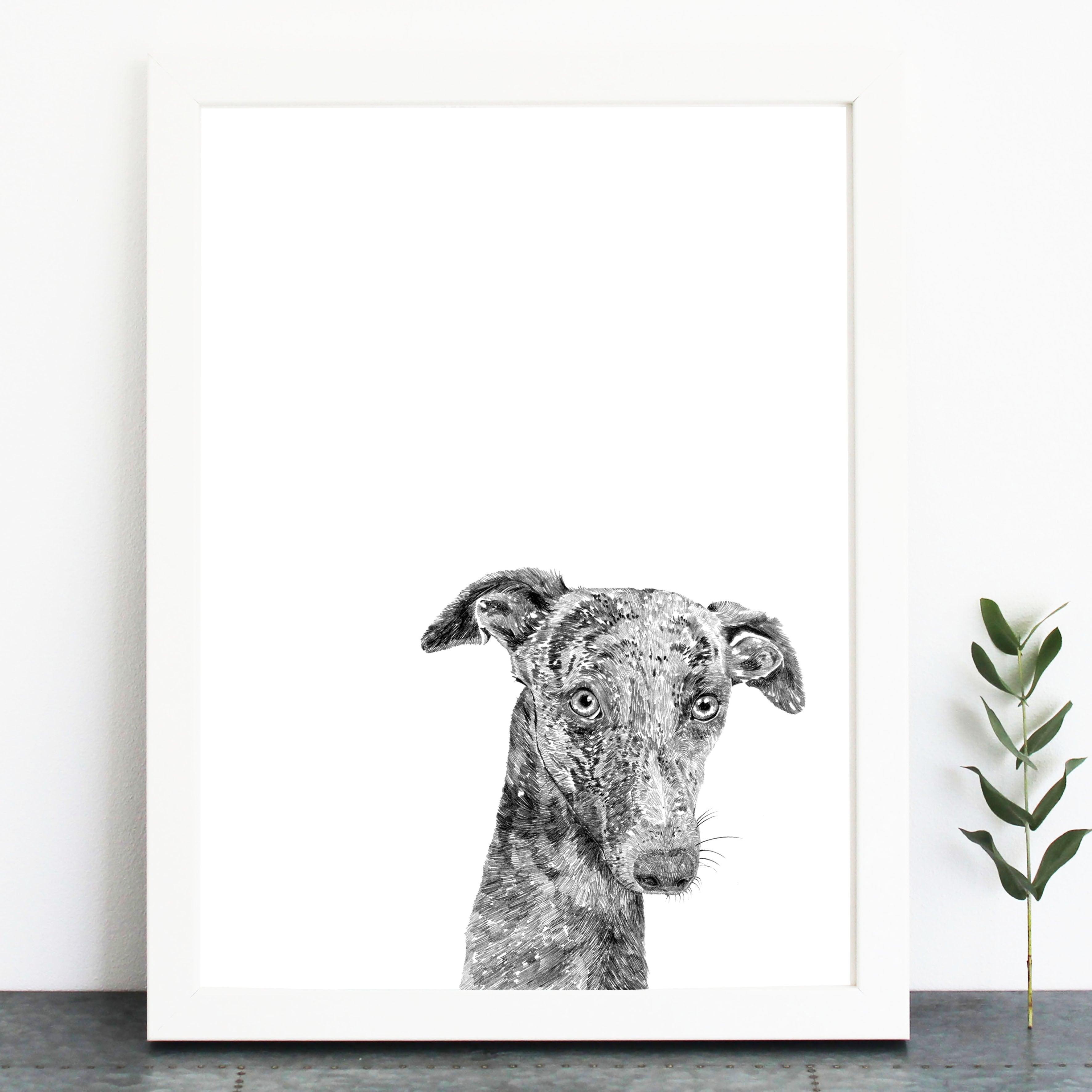 'Percy The Whippet' Print