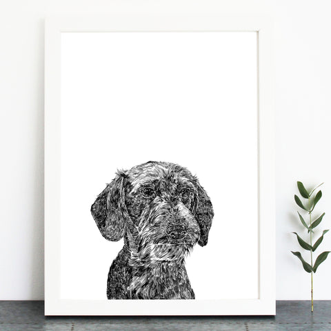 'Otto The Wire Haired Dachshund' Print
