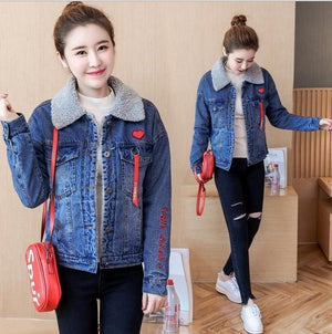 Spring Autumn Winter Female Jacket 2018 Fashion Women Bomber Jacket Wool liningliilgal-liilgal