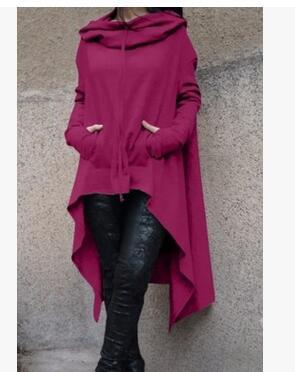 2018 European and American solid color long hooded Sweatshirts 10 colors 8liilgal-liilgal