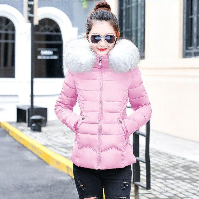 Winter Female Jacket 2018 Winter Coat Women Fake Fur Collar Warm Womanliilgal-liilgal