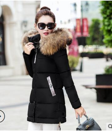 2018 Thick warm slim down coat women's long hooded fur collar coatliilgal-liilgal