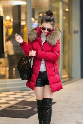 Winter Jacket Women Winter Jackets Coats Bing Fur Collar Warm 2018 Longliilgal-liilgal
