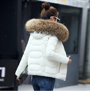 winter jacket women 2018 Fashion Cotton Padded Hooded Coat Parkas Female Waddedliilgal-liilgal