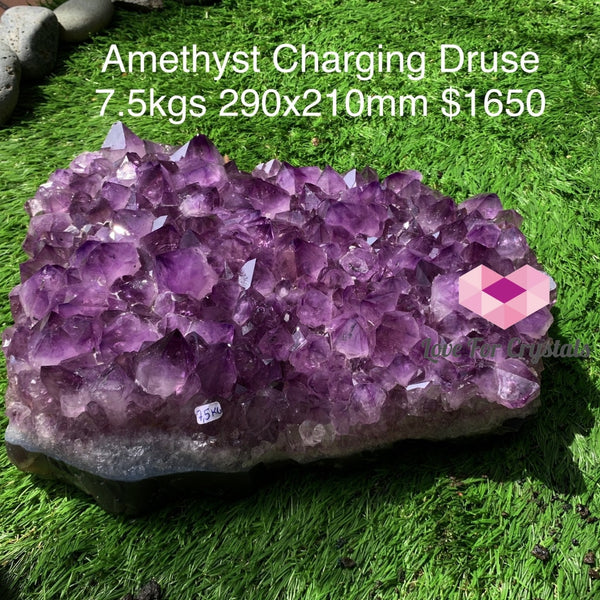 Amethyst Charging Druse (Brazil) 7.5Kgs Aaa Caves Geodes And Clusters