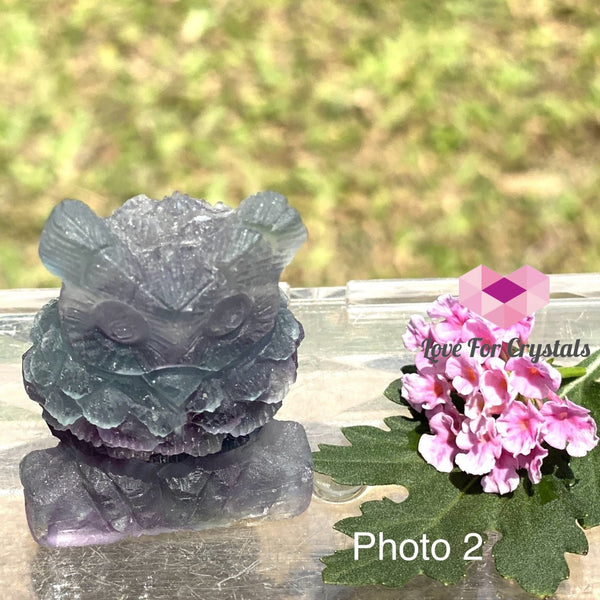 Fluorite Owl Engraved Crystal Photo 2 (50Mm) Polished Stones