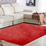 Floor Rug 80x120CM Polyester Fiber Anti-Skid Shaggy Fluffy Fluffy Rugs Area Rug Carpet Floor