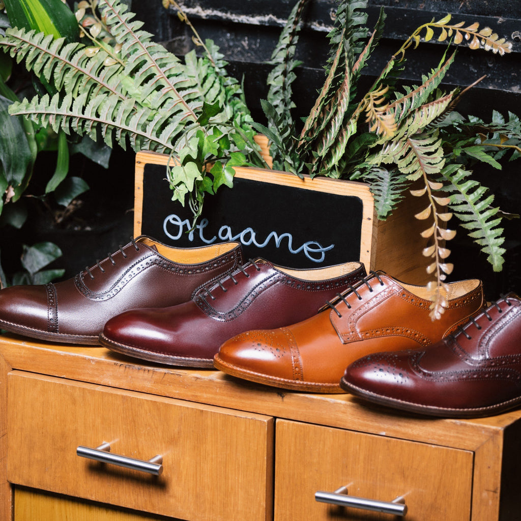 Brown Shoes Outfit? How to Find Alternatives to Your Old Black Shoes