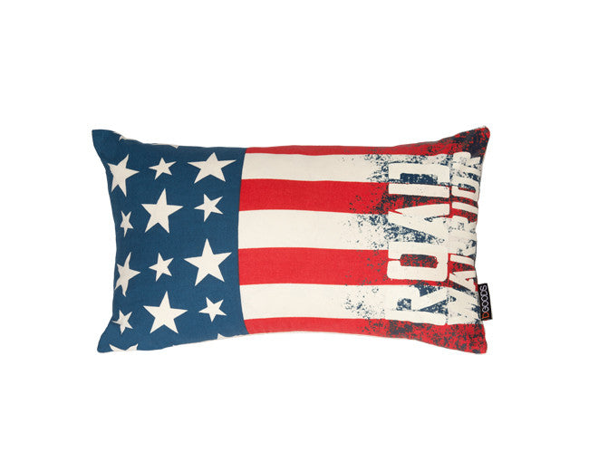 modern lumbar pillow on flag graphic with embroidered chevron