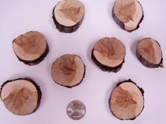 """Mini"" Cedar/Pine Rounds - (8) Pc. Package"